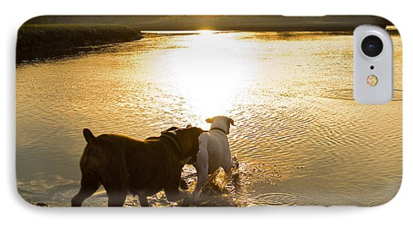 Dogs At Sunset Phone Case by Stephanie McDowell