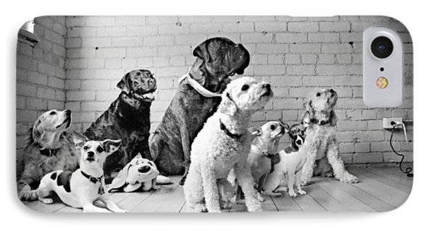 Dogs Watching At A Spot Phone Case by Sumit Mehndiratta