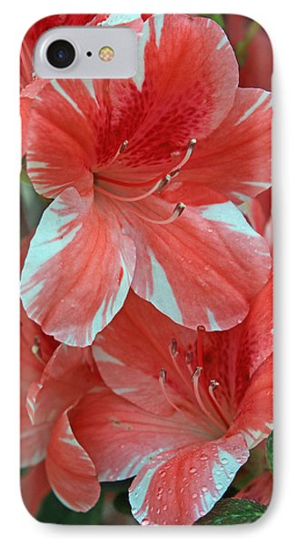 IPhone Case featuring the photograph Dogwood Azalea After Rain by Larry Nieland