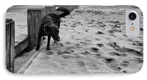 Doing What Dogs Always Do Phone Case by John Farnan