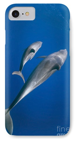 Dolphin And A  Cub Phone Case by Tom Peled