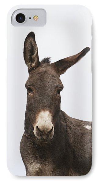 Donkey At The Hajigak Pass, Vardak Phone Case by Peter Langer