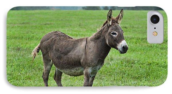 Donkey Phone Case by John Greim