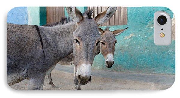 Donkeys, Harar, Ethiopia, Africa Phone Case by David DuChemin