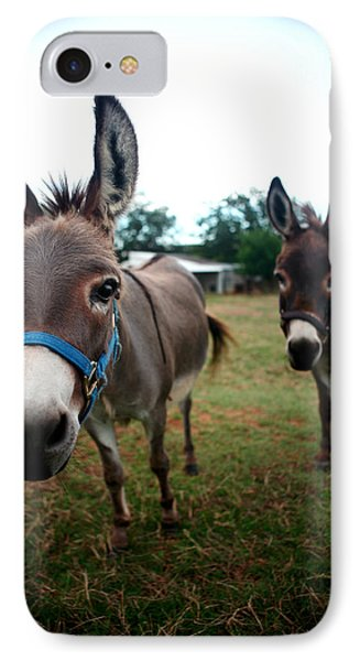 IPhone Case featuring the photograph Doting Donkeys by Lon Casler Bixby