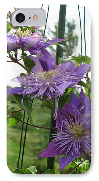 IPhone Case featuring the photograph Double Clematis Named Crystal Fountain by J McCombie