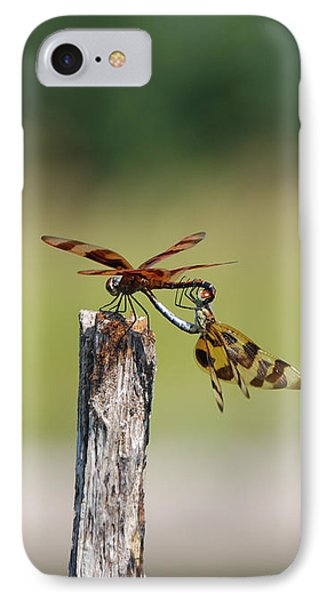 Dragon Fly Love Phone Case by Kelly Rader