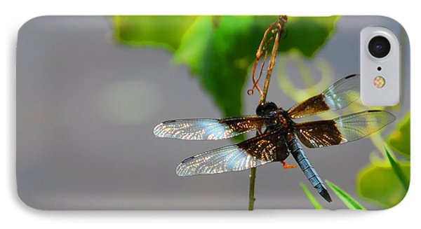 Dragonfly IPhone Case by Cindy Manero