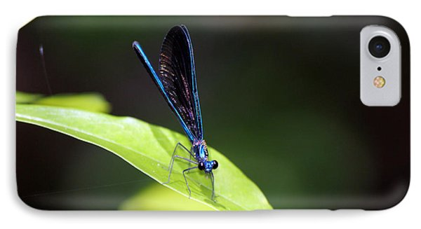 Dragonfly Fly IPhone Case by Deborah Hughes