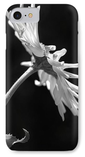Dramatic Daisy Flower Black And White Phone Case by Jennie Marie Schell