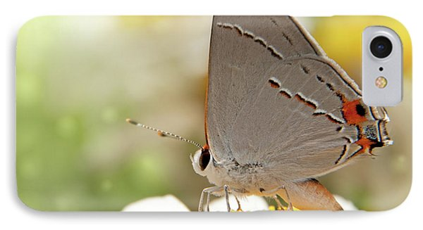 Dreamy Hairstreak Butterfly IPhone Case