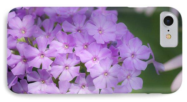 Dreamy Lavender Phlox Phone Case by Teresa Mucha