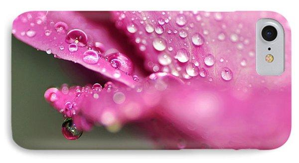 Droplet On Rose Petal IPhone Case
