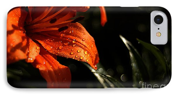 IPhone Case featuring the photograph Droplets On Flower by Vilas Malankar