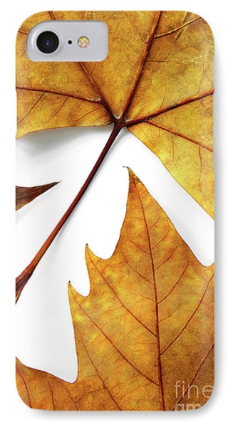 Dry Leafs Phone Case by Carlos Caetano