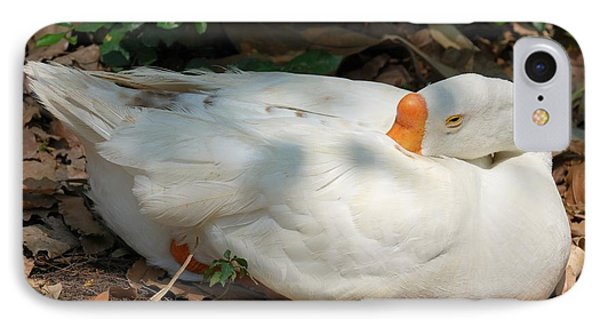 IPhone Case featuring the photograph Duck Resting by Fotosas Photography