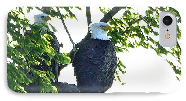 IPhone Case featuring the photograph Eagle Court by Nava Thompson