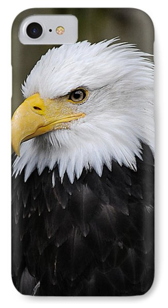 Eagle In Ketchikan Alaska 1371 IPhone Case by Michael Bessler