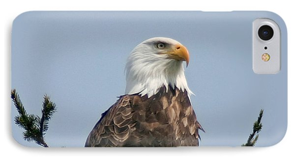 IPhone Case featuring the photograph Eagle  by Mitch Shindelbower