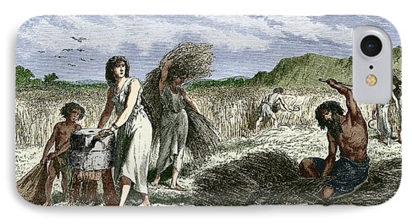 Early Humans Harvesting Crops Phone Case by Sheila Terry