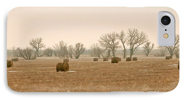 IPhone Case featuring the photograph Earlying Morning Hay Bails by James Steele