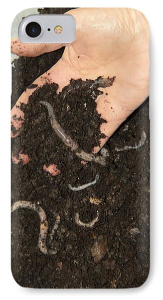 Earthworms In Soil IPhone Case