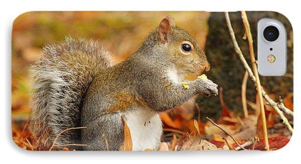 Eastern Grey Squirrel Phone Case by Andrew McInnes