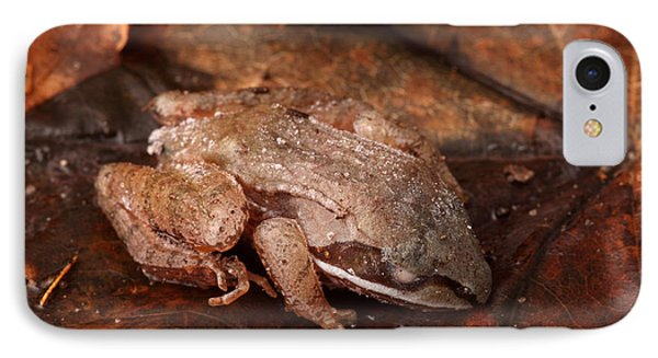 Eastern Wood Frog Hibernating Phone Case by Ted Kinsman