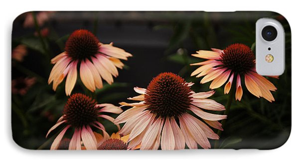 Echinacea Flowers Along The High Line Park - New York City IPhone Case by Vivienne Gucwa