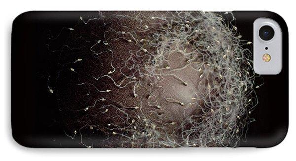 Egg Fertilisation Phone Case by Francis Leroy, Biocosmos