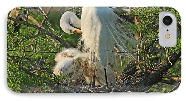 IPhone Case featuring the photograph Egret - Mother And Baby Egrets by Luana K Perez
