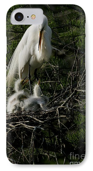 IPhone Case featuring the photograph Egret Bird - Mother Egret And Babies by Luana K Perez