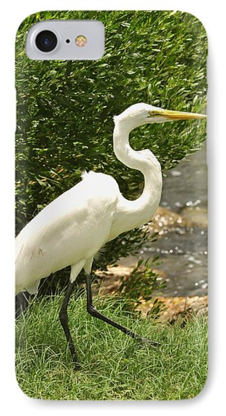 IPhone Case featuring the photograph Egret By The Bay by Rick Frost