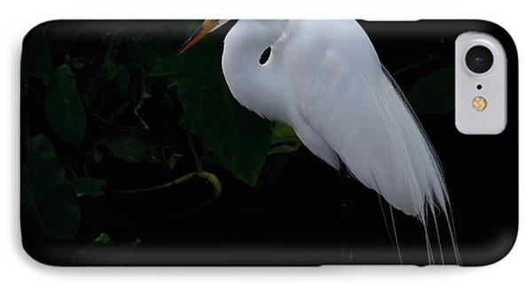 Egret On A Branch IPhone Case by Art Whitton