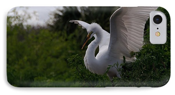 Egret Wings IPhone Case by Art Whitton