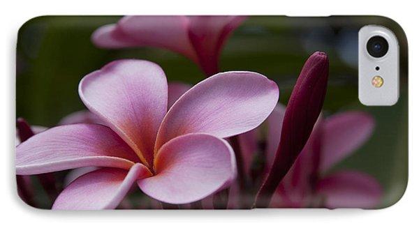 Eia Ku'u Lei Aloha Kula - Pua Melia - Pink Tropical Plumeria Maui Hawaii Phone Case by Sharon Mau