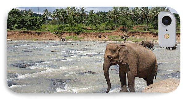 Elephants Phone Case by Jane Rix