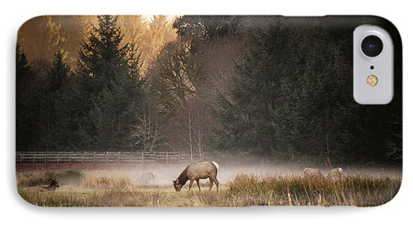 Elk Camp IPhone Case by Randy Wood