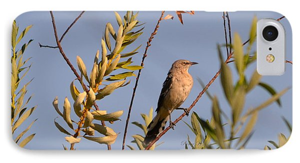 IPhone Case featuring the photograph Mocking Bird1 by Rima Biswas