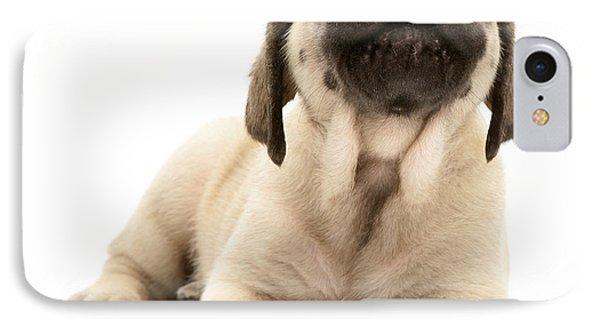 English Mastiff Puppy IPhone Case by Jane Burton