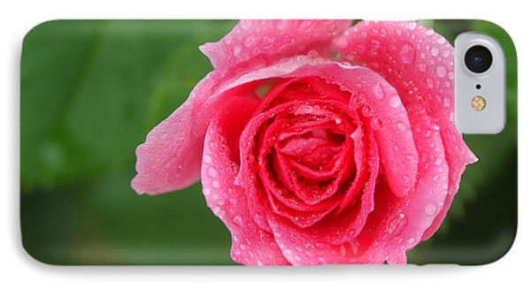 English Rose Phone Case by Bonnie Sue Rauch and Photo Researchers