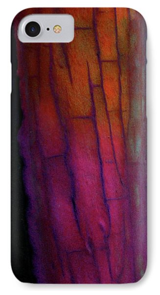 IPhone Case featuring the digital art Enter by Richard Laeton