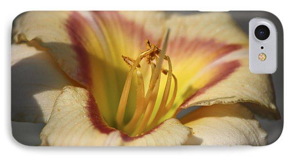 Ethel Brown Daylily 3 Phone Case by Teresa Mucha