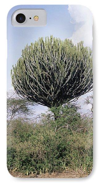 Euphorbia Candelabrum Phone Case by Adrian T Sumner