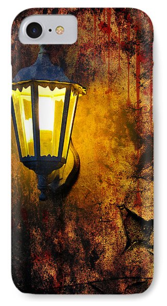 Evening Light And Wall Phone Case by Svetlana Sewell