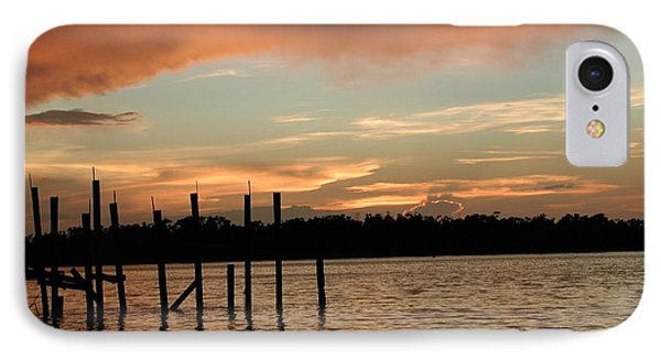 Everglades Sunset Phone Case by Nancy Taylor