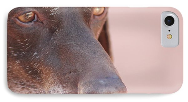 IPhone Case featuring the photograph Eyes Of The Hound by Carolina Liechtenstein