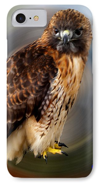 Falco 2 Tinnunculus Vf Phone Case by Colette V Hera  Guggenheim