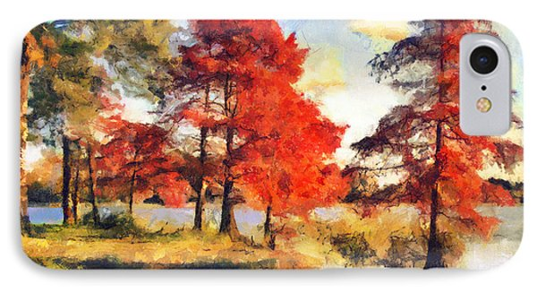 Fall At Swan Lake Phone Case by Jai Johnson