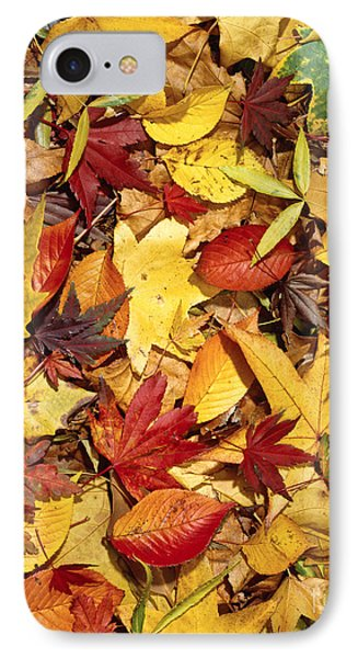 Fall  Autumn Leaves IPhone Case